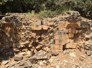 Caesarea Philippi not only had a temple to Pan but after the Roman conquest of the area they built a temple to Augustus...here are the ruins of that temple.